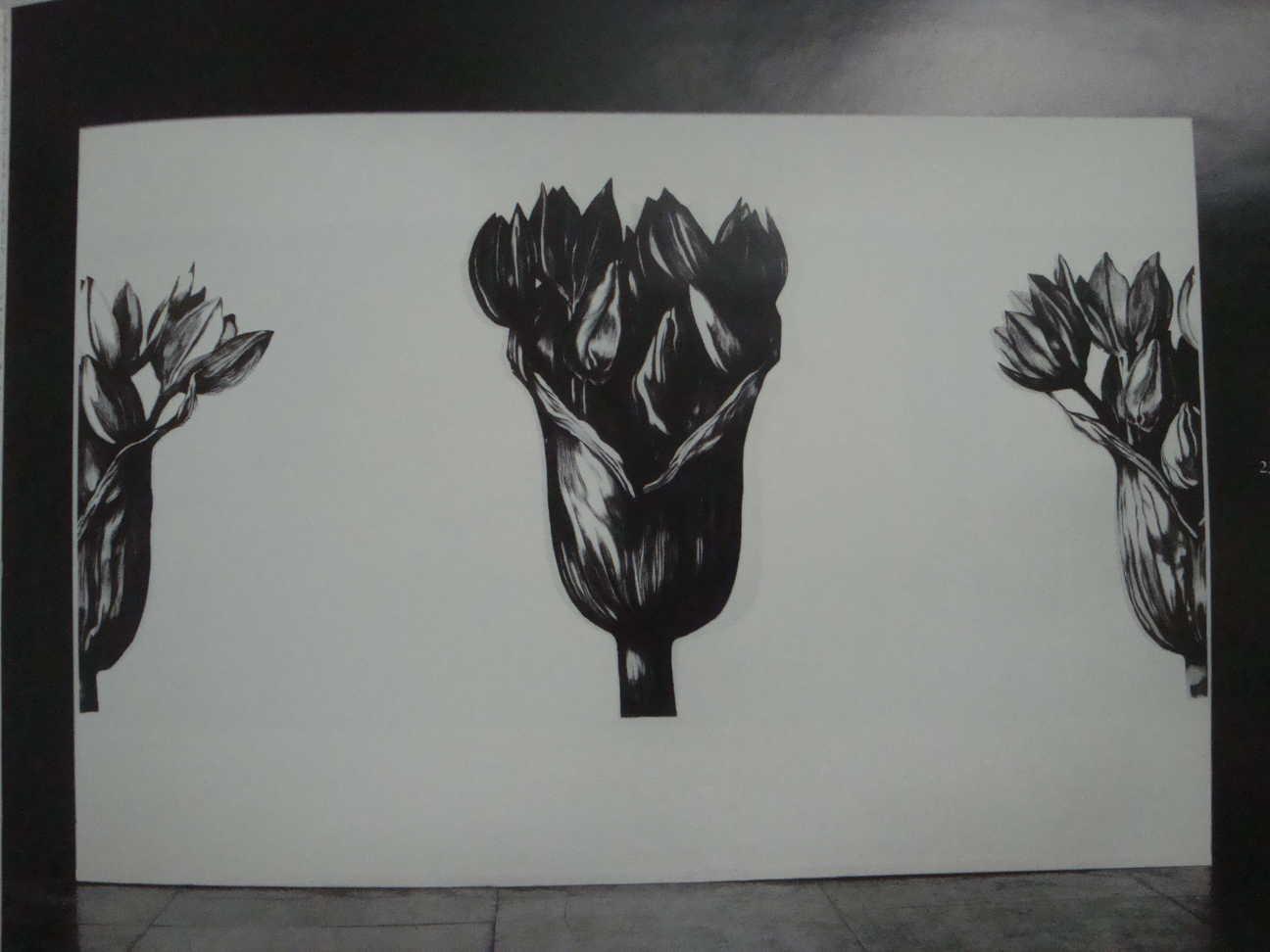 Herbiers – 280 x 150 cm (3)