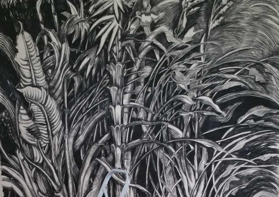 Jungles (détail) – 250 x 280 cm